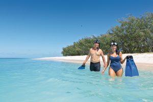 Heron island lady musgrave island snorkelling. lady elliot island